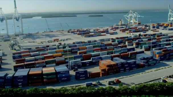 Puerto de contenedores de transporte marítimo internacional en Miami — Vídeo de stock