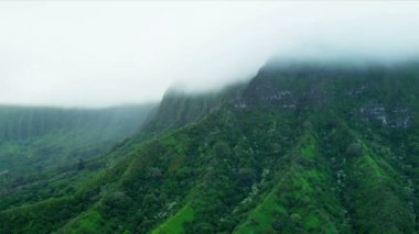 Volcanic cliffs shrouded in cloud — Stock Video