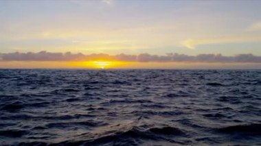 Sunrise over gentle ocean waters — Stockvideo