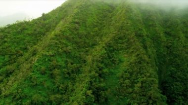 Aerial view of fertile volcanic cliffs, Hawaii — Stock Video