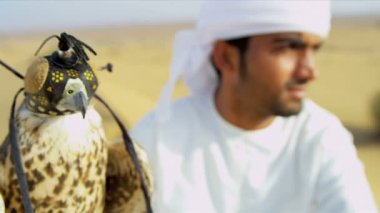 Bird in falconry hood with male owner — Stock Video
