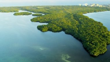 Aerial view of Florida coastal waters near Everglades, Biscayne Bay — Video Stock