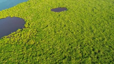 Aerial view coastal Island Wetlands Southern Florida — Stock Video