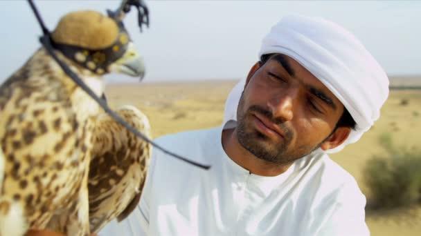 Falconer stroking feathers of bird — Vidéo