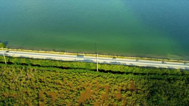 Zona pantanosa carretera cruce Key Largo — Vídeo de stock