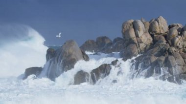 Sea waves break on the sea — Stock Video