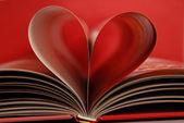 这本书的心 — 图库照片