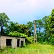 Stock Photo: Abandoned building among brushwood