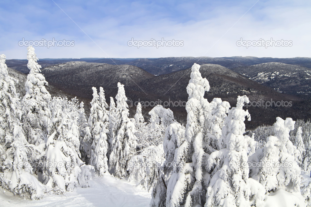 Winter landscape of mont tremblant in quebec  — Stock Photo #14835415
