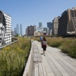 Stock Photo: Highline Park in New York