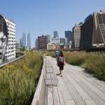 Highline Park in New York — Stock Photo #16826495