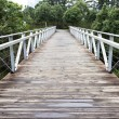 Wooden bridge and metal railings — Stock Photo #15497947