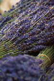 Bunch of lavander at the market — Stock Photo