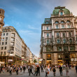Vienna streets — Stock Photo #25585351
