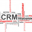 Word cloud - CRM - Vettoriali Stock