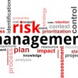 Word cloud - risk management - Stock Vector