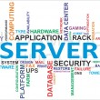 Stock Vector: Word cloud - server