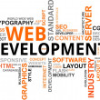 Word cloud - web development - Stok Vektör