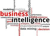 Word cloud - business intelligence — Stockvector