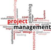 Word cloud - projectmanagement — Stockvector