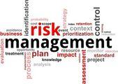 Word cloud - risk management — Stock Vector