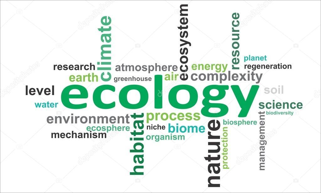 Слова связанные с экологией на английском