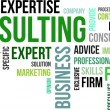 Word Cloud - Consulting — Imagen vectorial