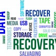 Word cloud - data recovery — Stock Vector #25199525