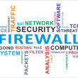 Word cloud - firewall — Stock Vector #25296107