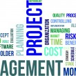 Word cloud - project management — 图库矢量图片