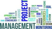 Word cloud - project management — Stockvector