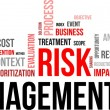 Stock Vector: Word cloud - risk management