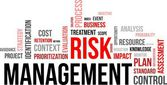 Word cloud - risk management — Stock Vector