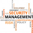 Stock Vector: Word cloud - security management