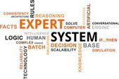 Word cloud - expert system — Stock Vector