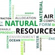 Stock Vector: Word cloud - natural resources