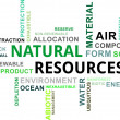 Word cloud - natural resources — Stock Vector #37428123