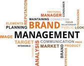 Word cloud - brand management — Stock Vector