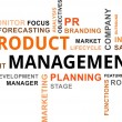 Word cloud - product management — Stock Vector