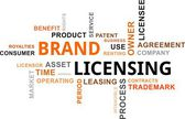 Word cloud - brand licensing — Stock Vector