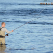 Fly Fishing — Stock Photo #17430443
