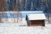 Winter landscapes — Stock Photo