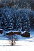 Doğal güzellik kış manzaraları — Stok fotoğraf