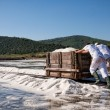 Salted workers — Stock Photo