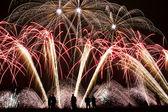 Fuochi d'artificio nel cielo notturno, sagoma — Foto Stock