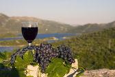 Bicchiere di vino e uva su pietra — Foto Stock