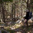Mountaineer in the forest — Stock Photo