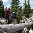 Stock Photo: Two mountaineers and the old tree trunk