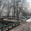 Bridge over river in winter season — Stock Photo #14868791