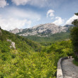 Footpath on mountain — Stock Photo